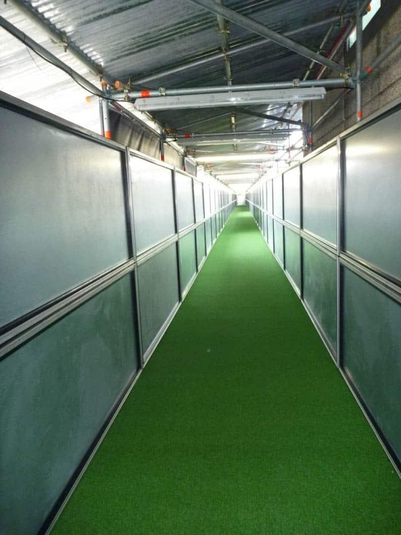 Covered Walkways7